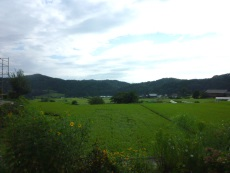 syuukaijyo-tatekata4.jpg